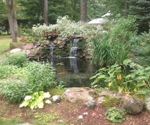 Landscaping Water Features by Landscape Solutions & Maintenance