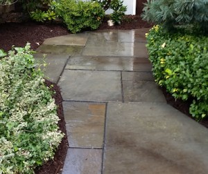 Walkway by Landscape Solutions & Maintentance
