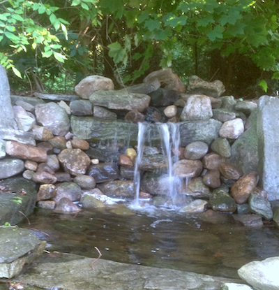 Expert landscaping and water features from Landscape Solutions & Maintenance