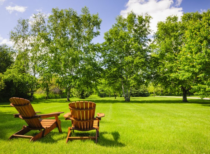 5 Reasons You Need a Landscaping Content Writer in 2017