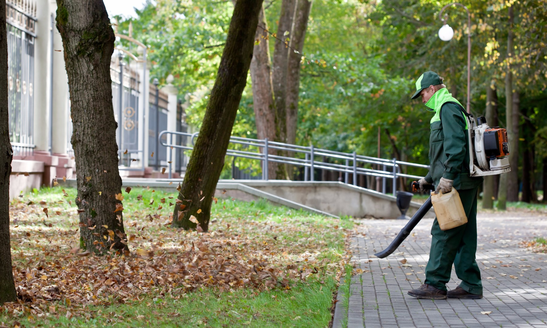 It's Time to Let Your Audience Know About Fall Lawn & Landscaping