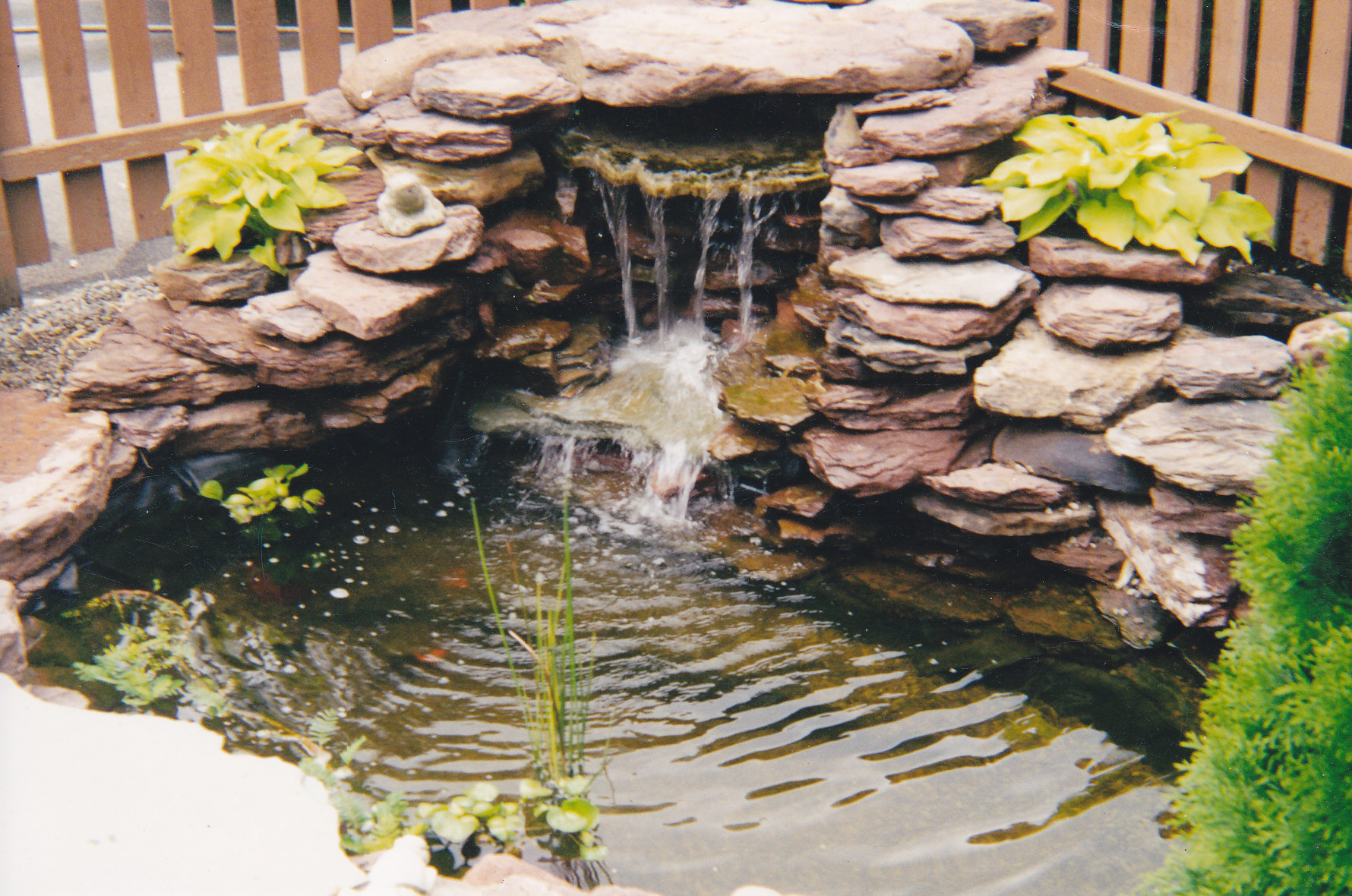 Ponds Watergardens and Waterfalls by Forever Green on Landscape Pond Design id=25545