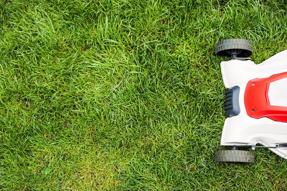 3 Tips: Landscape Maintenance, Drainage Design on Landscape Drainage Design  id=59615