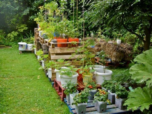 Планировка огорода на дачном участке: 150 фото примеров ...