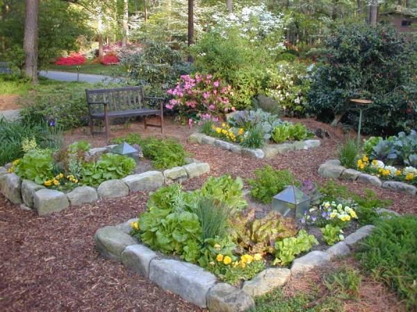 Огород на дачном участке: 105 фото планирование и ...