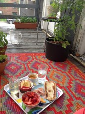picnic in the fire escape garden