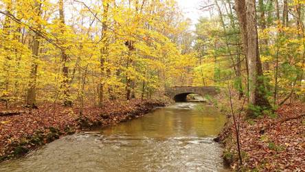 Perry County Economic Value of Open Space