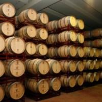 """Concurs de disseny d'etiquetes de vi: Viyuela Selecció """"D. O. Ribera del Duero"""""""