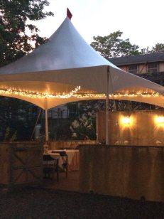 Wedding reception on the lawn & patio