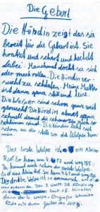 Beschreibung D-Wurf