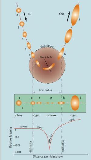 Gambaran kehancuran bintang akibat gaya pasang surut lubang hitam masif. Copyright J.-P. Luminet
