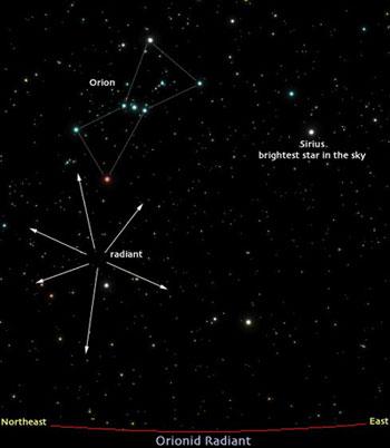 Radiant orionid di langit selatan. kredit : meteorshoweronline.com
