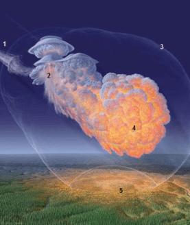 Gambar 4.  Ilustrasi bagaimana sebuah asteroid (1) memasuki atmosfer Bumi dan terpecah-belah demikian rupa hingga ketinggian tertentu untuk kemudian mengalami ledakan di udara (2) sembari melepaskan gelombang kejut (3) dan sinar panas (4). Hantaman gelombang kejut dan panas tinggi memorak-porandakan permukaan Bumi tepat di bawah titik ledaknya (5). Dalam peristiwa Siberia, energi ledakan dan ketinggian titik ledak adalah demikian rupa sehingga hanya gelombang kejutnya yang menerpa permukaan Bumi sementara sinar panasnya keburu menghilang. Sumber: Sandia National Laboratory, 2009.