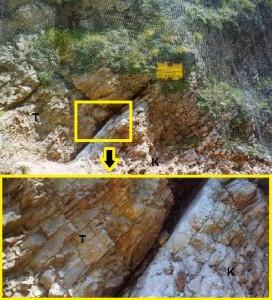 Gambar 6. Singkapan tipis lempung hitam yang sangat kaya akan Iridium, terjepit di antara batuan sedimen era Kapur (K) dan tersier (T) yang termiringkan akibat proses tektonik. Singkapan yang terletak di lembah Botticione, kota kuno Gubbio, wilayah Umbria (Italia) merupakan jejak geologis yang terbentuk dari proses tumbukan benda langit 65 juta tahun silam, peristiwa dahsyat yang menyapu bersih kawanan dinosaurus dan 75 % makhluk hidup saat itu dari muka Bumi. Lapisan lempugn tipis yang sama dijumpai juga di puluhan singkapan di berbagai penjuru Bumi, pada batuan yang seusia. Sumber: Alvarez dkk, 1990.
