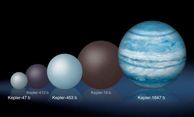 Perbandingan planet-planet sirkumbinari yang ditemukan Wahana Kepler. Kredit: Lynette Cook