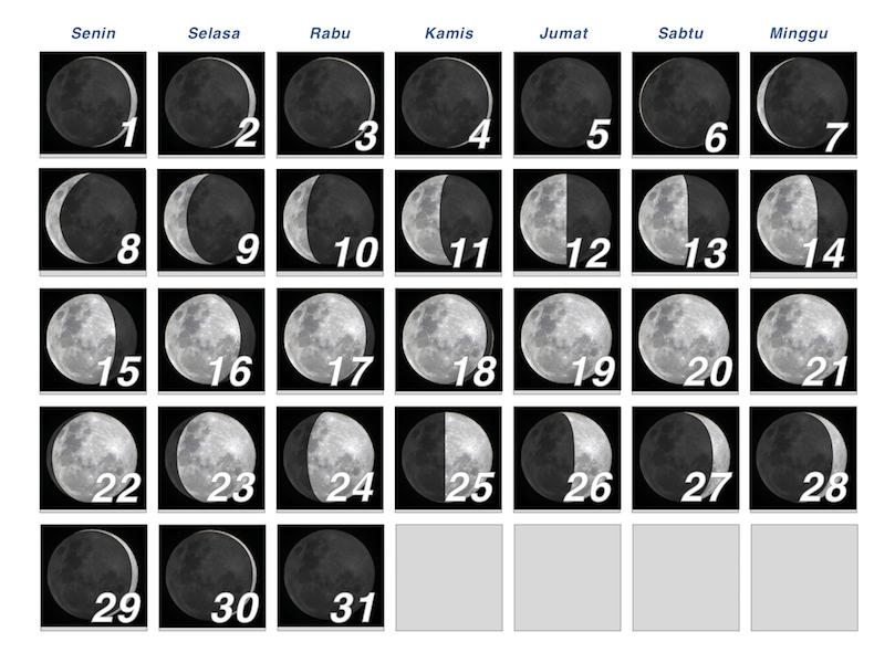 Fase Bulan di bulan Agustus dari data Starry Night Pro. Kredit: Wicak Soegijoko