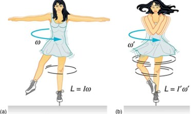 Contoh kekekalan momentum sudut saat peluncur es berputar. Ia berputar lambat saat tangan terentang dan kecepatan sudut rendah. Tapi ketika tangan ditarik ke badan, momen inersia berkurang dan kecepatan sudut makin besar. Kredit: Boundless.com