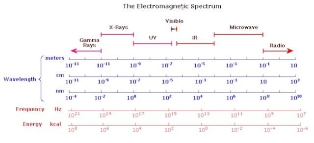 Rentang panjang gelombang elektromagnetik. Kredit: William Reusch
