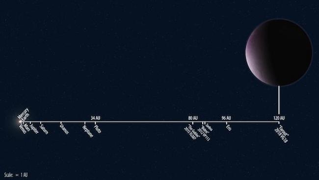 Jarak Farout dibanding planet-planet di Tata Surya. Kredit: Roberto Molar Candanosa & Scott S. Sheppard / Carnegie Institution for Science.