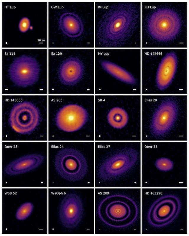 20 Piringan protoplanet yang diamati ALMA. Kredit: Andrea Isella/DSHARP/ALMA