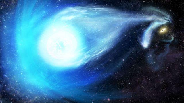 Ilustrasi bintang yang dilontarkan oleh lubang hitam supermasif. Kredit: James Josephides (Swinburne Astronomy Productions)