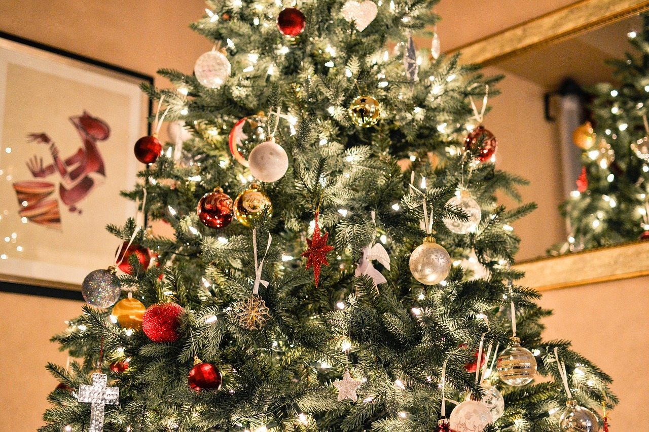 christmas trees guide how to experience langley