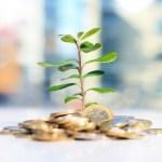 Långsiktig tillväxt kostar