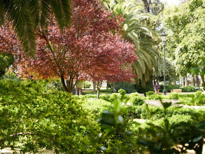 В парке Марии Луизы, Севилья