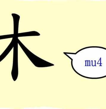 caractere chinois arbre mu 木