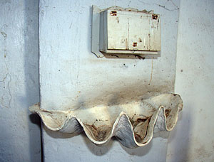 Baptismal font made from the half shell of a giant clam (genus Tridacna)