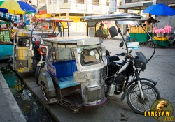 Ubiquitous tricycles are the main transport vehicle within Calapan