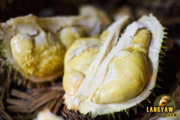 cheap durians