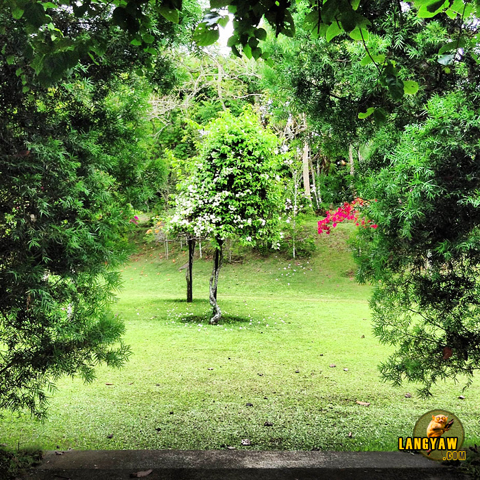 Beautiful gardens and montane attractions at the Eden Nature Park & Resort