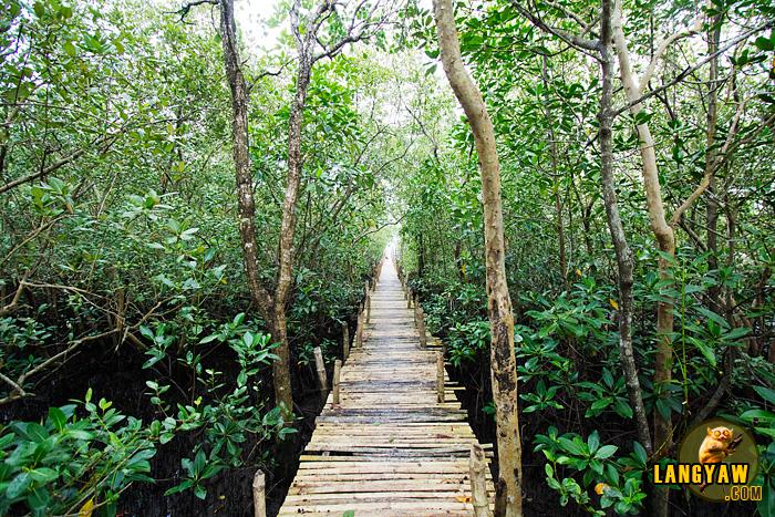 The wooden bridge at Brgy. Pawa