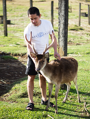 Petting one of the deer in the farm