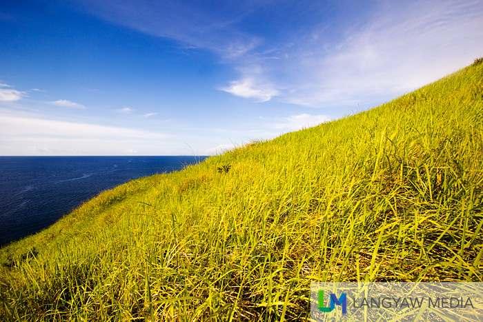 Blue sky, blue sea and green grass