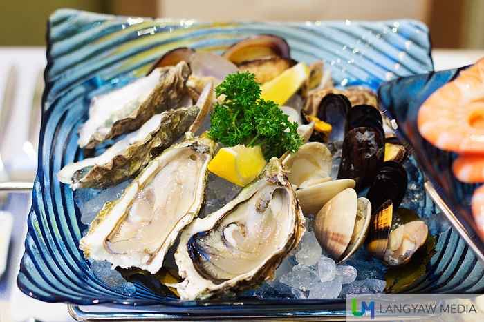 Oysters, mussels, clams and sea snails