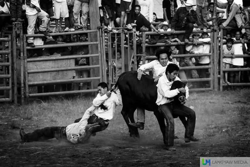 kaamulan-cowboys-13