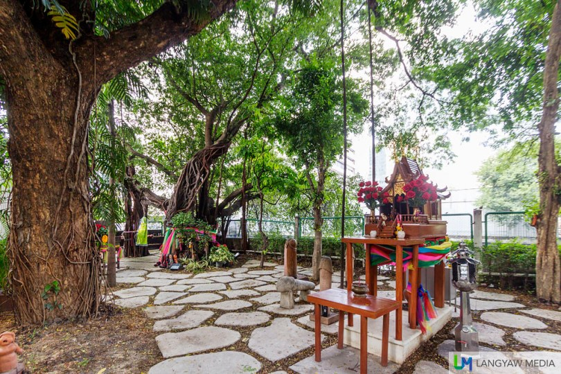 There are no temples within the small shrine grounds. What you have is just a spirit house, a few trees including a spirit tree and all these wooden phallus