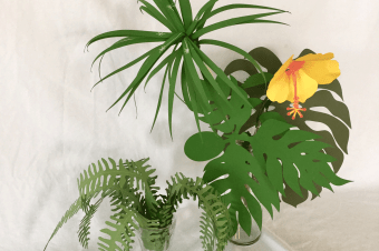 Lani's Tropical Plants Paper Craft Kits are Ready for Shipping Worldwide!