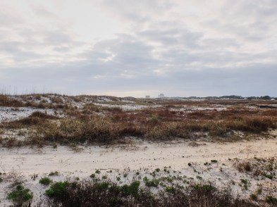 Looking at the dunes next to the beach