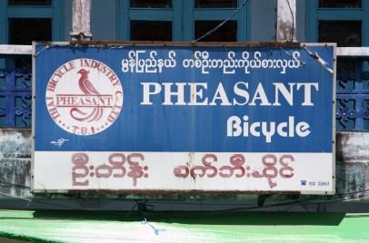 Pheasant Bicycle