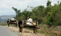 Bullock cart highway, near Heho