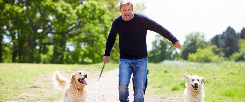 caminhar com cachorro de estimação faz bem