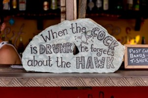 """""""When the cock is drunk he forgets about the hawk"""" - Ghanaian proverb"""
