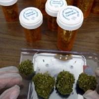 Jueces: declaración por una política de drogas respetuosa de los  derechos humanos