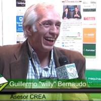 Ley de semillas: Greenpeace denunció vínculos entre el Gobierno y agroquímicas