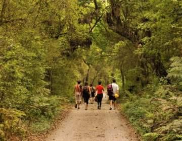 Senderismo y Trekking, naturaleza y salud en Tucumán