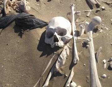 Los esqueletos hallados en una playa de Chubut datarían de 3.000 años