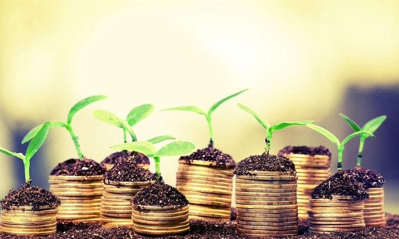 foto de plantas creciendo encima de unas monedas.